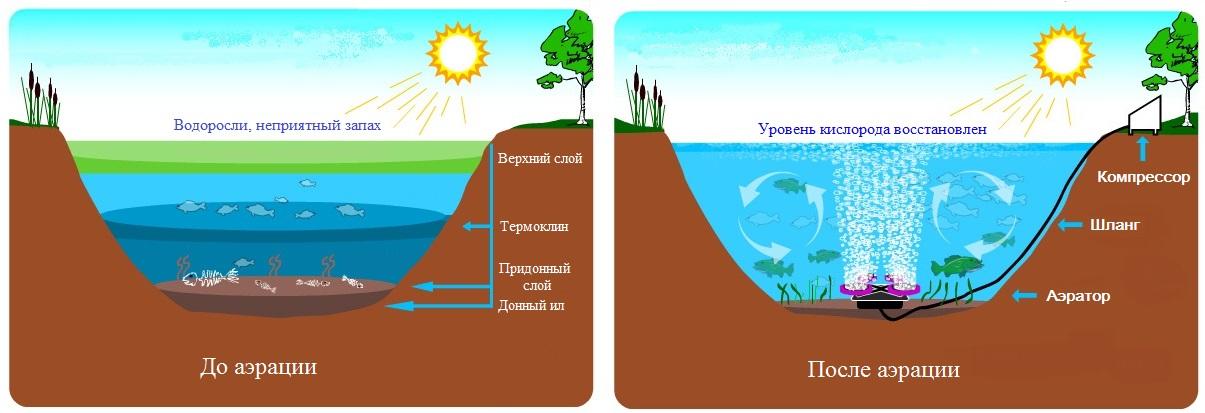 особенности аэрации воды