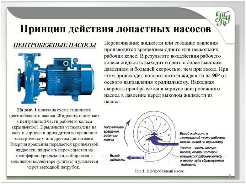 Более подробно о принципе работы роторного насоса